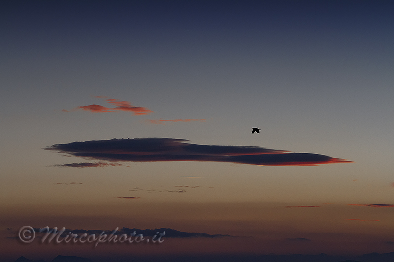 Red…clouds…crow
