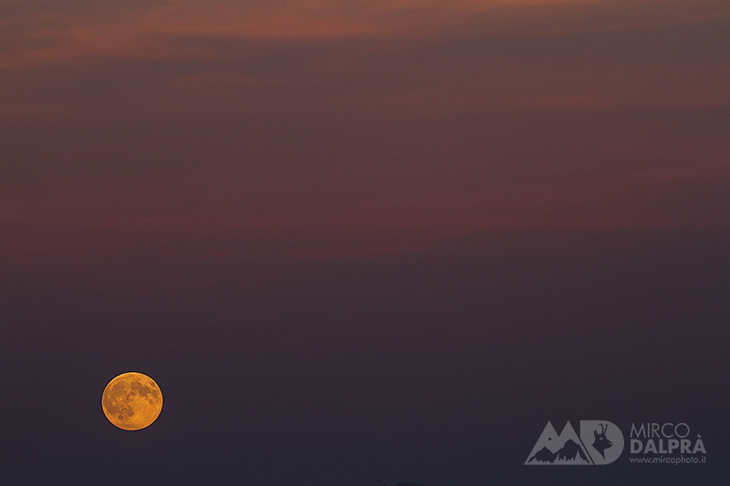 Sunset moon……..